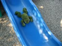 10 Kermit on a Slide