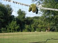 13 Kermit can Spike!