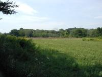 13 Field